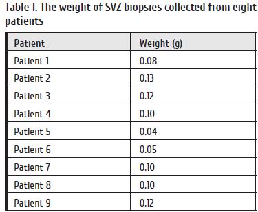 52-61 Table 1. The weight of SVZ biopsies collected from eight.png