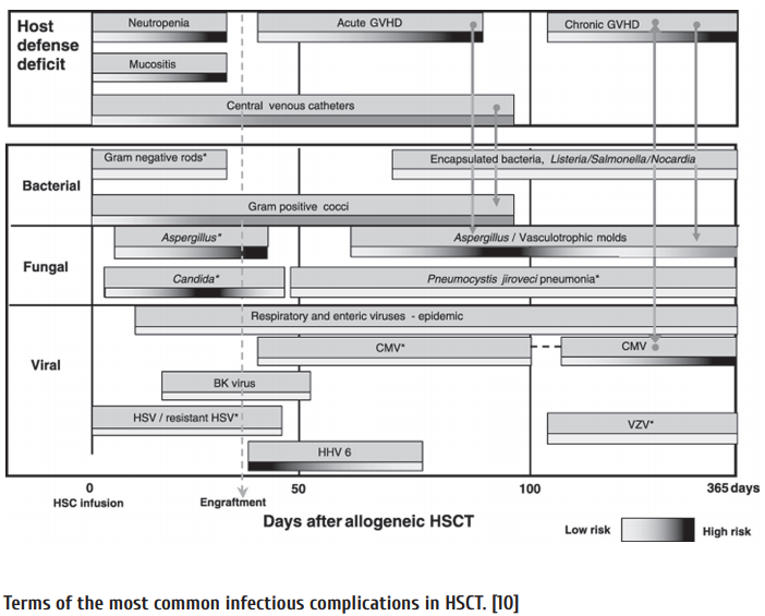 Figure_1_Terms_of_the_most_common_infectious_complications_in_HSCT__10.png